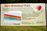 herz_kreislauf_park_2